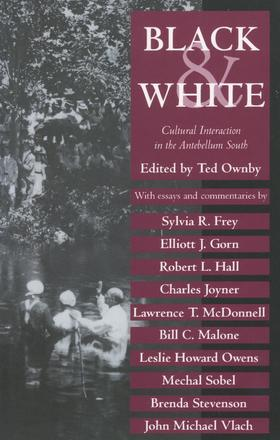 Black and White - Cultural Interaction in the Antebellum South