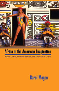 africa-imagination-cover